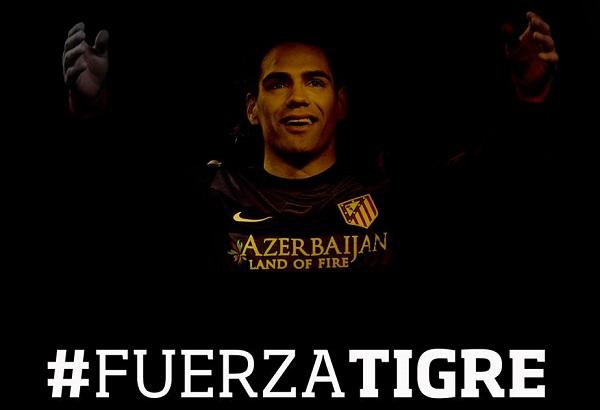 «Fuerza Tigre!», или Как мир поддерживает Радамеля Фалькао