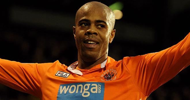 Sylvestre returned on Swansea's radar