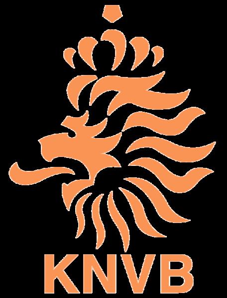 ЧМ-2014. Отборочные матчи. Голландия одолела Турцию