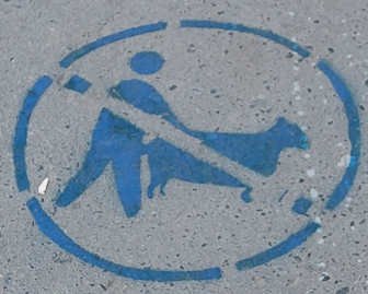 Граффити, посвященные «Анжи», в городах России. «Галерея имени Бышовца»