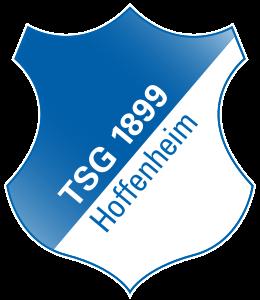 «Хоффенхайм» подписал талантливого серба