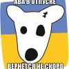 Аватар болельщика Константин Коваль