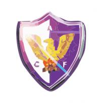 ФК Феникс лого
