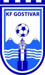 ФК Гостивар лого