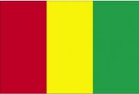 Флаг Гвинея