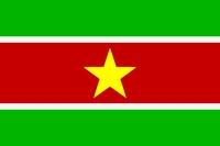 Флаг Суринам
